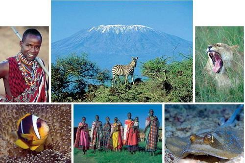 Kenia Collage