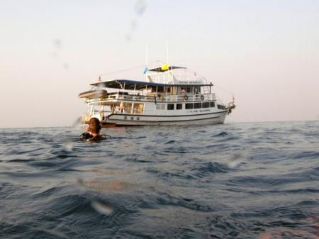 M/V Flying Seahorse,Thailand