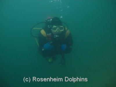Rosenheim Dolphins Tauchsport e. V.,Rosenheim/OBB,Bayern,Deutschland
