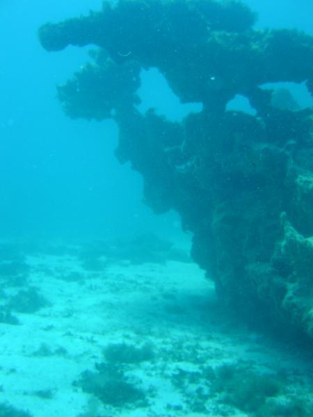 Punta Amanay,Corralejo,Fuerteventura,Kanarische Inseln,Spanien