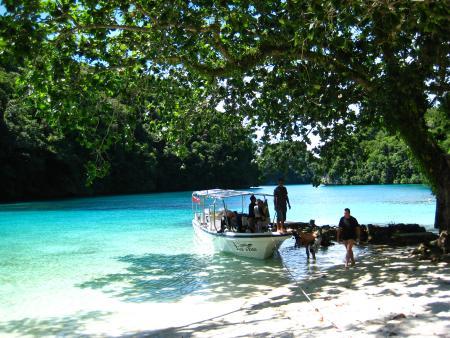 Fish´n Fins,Palau