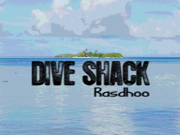Dive Shack Rasdhoo, Tauchen, Tauchschule, Rasdhoo, Dive Shack, Rasdhoo, Nord Ari Atoll, Malediven