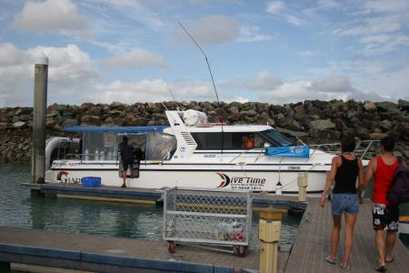 DIVE TIME,Airlie Beach / Whitsundays,Australien