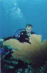 Lucky Fish Diving Akumal,Mexiko