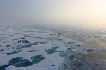 Investigating meltpods on Arctic sea ice- © S.Hendrick / AWI