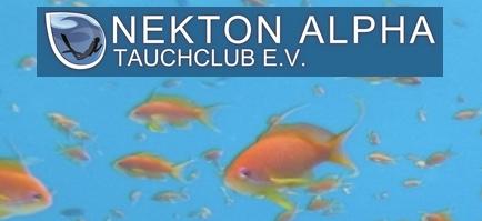 TC Nekton Alpha e.V. Stendal, Deutschland, Sachsen-Anhalt