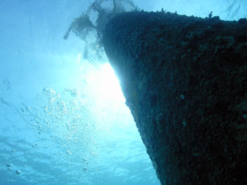 Bayahibe - Catalina - Aquarium, Catalina Island,Dominikanische Republik