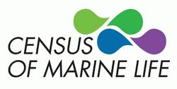 Logo Census