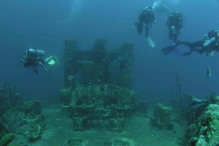 S.E. Aruba Fly´n Dive,Aruba