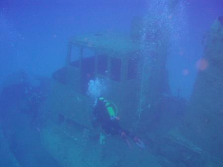 Mad Shark Diving,St. Pauls Bay,Malta