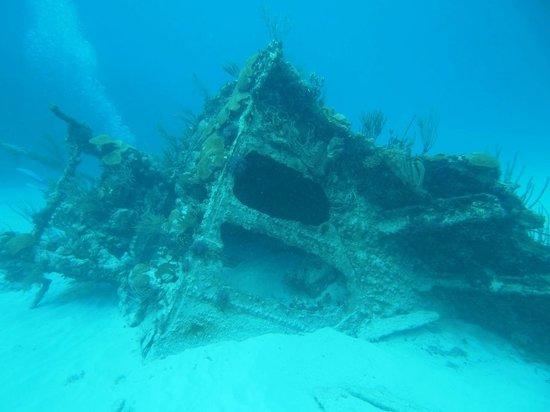 Mary Celestia Bermuda, Mary-Celestia, Bermuda