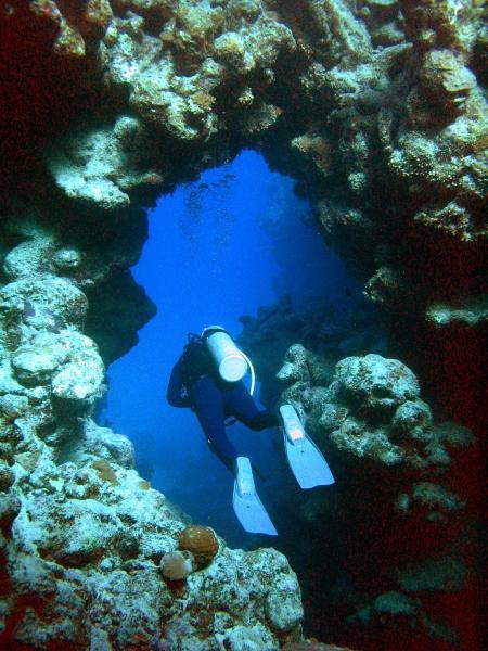 Pioneer-Divers,Marsa Alam,Marsa Alam und südlich,Ägypten,Marsa Alam123,Safaga