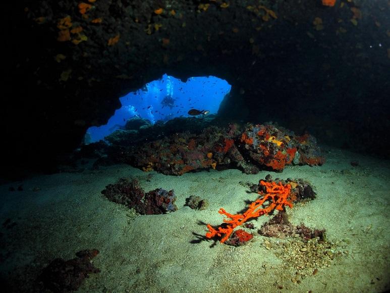Seahorse Dive Center, Griechenland