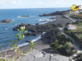Strand von Los Cancajos, Tauchen La Palma, Kanaren, Cancajos, Hausriff, La Palma - Los Cancajos, Spanien