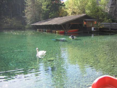Fernsteinsee / Sameranger See,Österreich