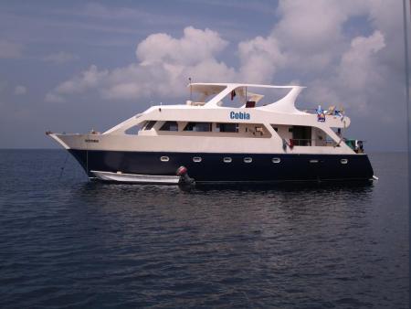 MV Cobia,Malediven