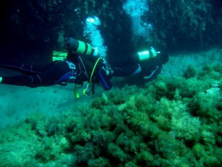 Atlantis,Rethymnon,Kreta,Griechenland