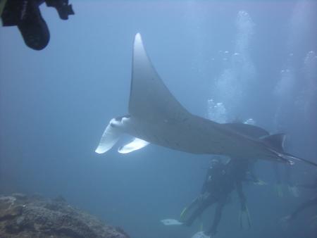 Water Worx Dive Center,Padang Bai,Bali,Indonesien