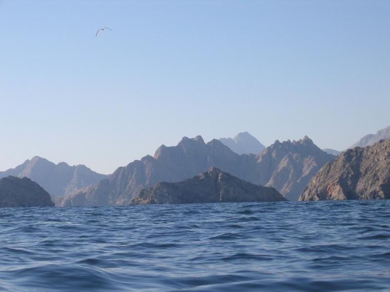 Tauchsafari mit der Red Dhow, Allgemein,Oman