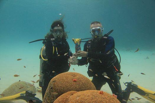 Die Übergabe, Curacao Divers (Sun Reef Village), Sint Michiel, Niederländische Antillen, Curaçao