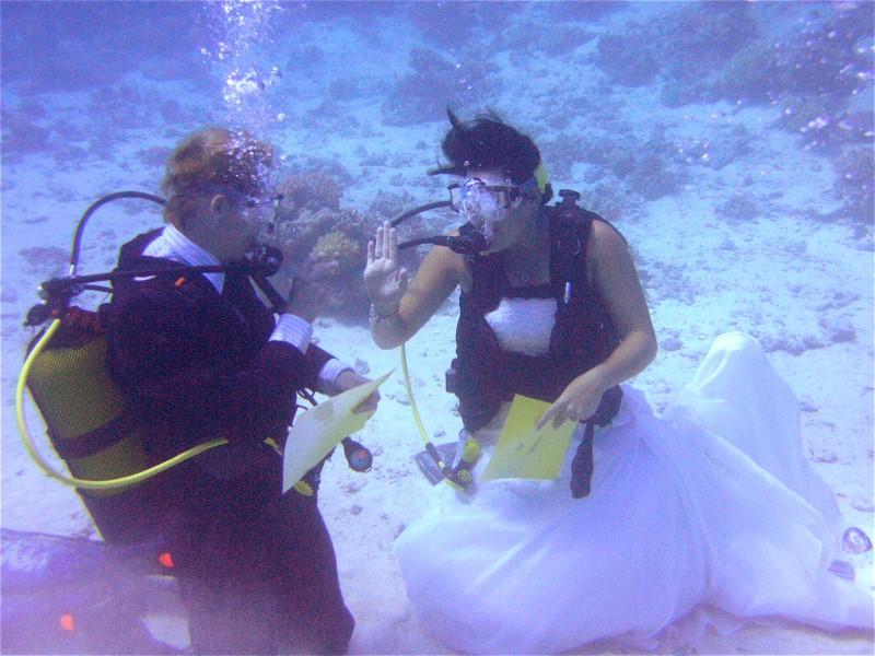 Unterwasserhochzeit Tobia Arbaa, Safaga ORCA - Dive Clubs,Ägypten,Bräutigam,Braut,Hochzeit,Unterwasserhochzeit