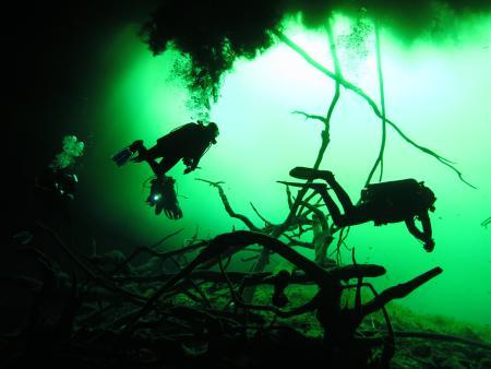 Cenote Adventures,Playa del Carmen,SUB AQUA DiveCenter Dahabeya,Sinai-Nord ab Dahab,Mexiko,Ägypten