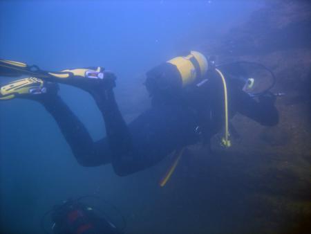 Grupi-Diving Düsseldorf,Nordrhein-Westfalen,Deutschland