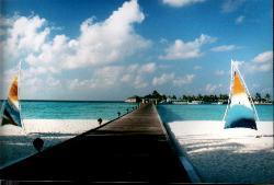 Dive Oceanus,Sun Island Resort,Süd Ari Atoll,Little Mermaid,Malediven