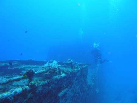 Justdiving,Calodyne,Mauritius