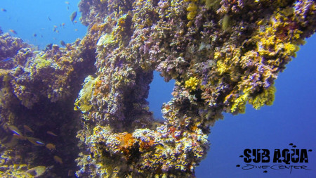 H.P. Reef,Nord Male,Malediven