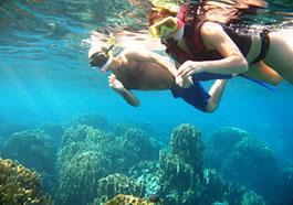 Schnorcheln an den Surin Inseln , Schnorcheln khaolak surin islands, Manta Point, Khao Lak, Thailand, Andamanensee