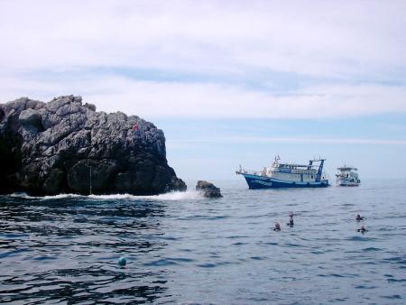 Chaloklum Diving,Koh Phangan,Golf von Thailand,Thailand