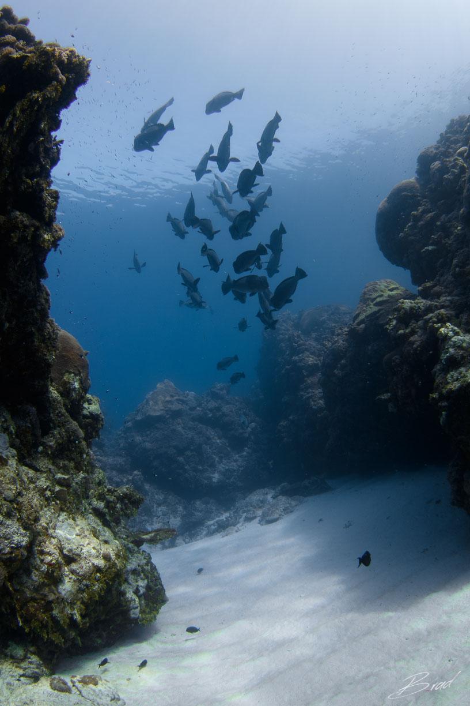 Caverns Yap, Caverns, Yap, Mikronesien