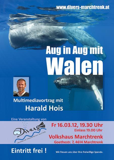 Tauchclub Divers Marchtrenk Austria,Österreich