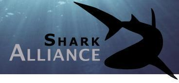 Logo Shark Alliance