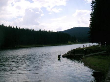 Lütschetalsperre,Frankenhain,Thüringen,Deutschland