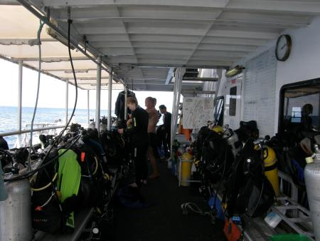 Cairns Dive Center,Cairns,Australien