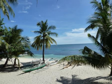 Ocean Vida Malapascua,Philippinen