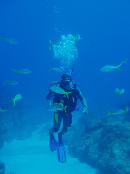 Scuba Caribe,Rio San Juan,Hotel Bahia Principe,Dominikanische Republik