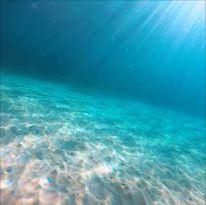 Dive´n Mallorca, Cala D´Or, Spanien, Balearen