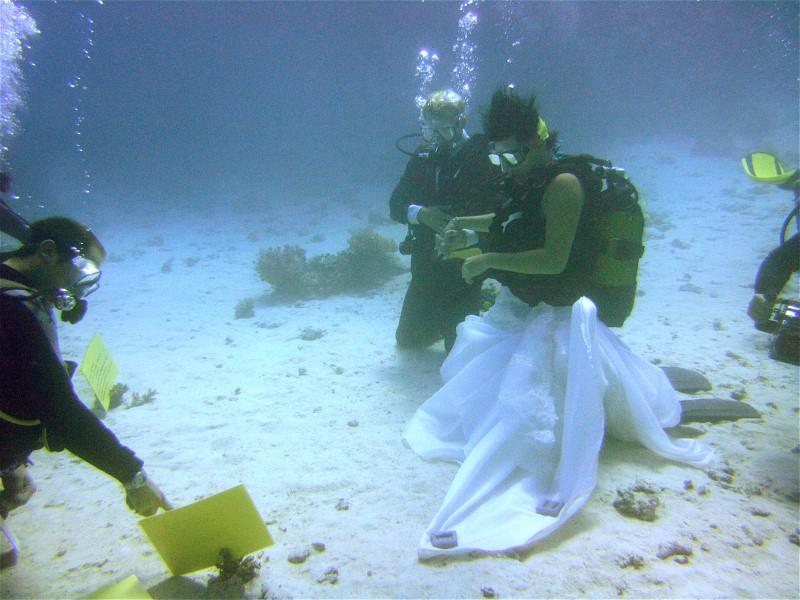 Unterwasserhochzeit Tobia Arbaa, Safaga ORCA - Dive Clubs,Ägypten,UW Hochzeit