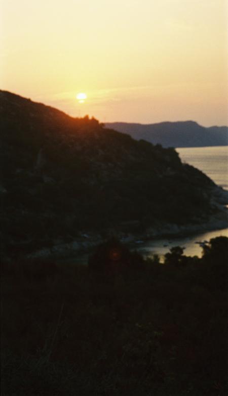 Hydra,Fetovaia (Elba),Italien