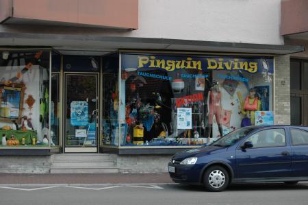 Pinguin-Diving,Niefern,Baden Württemberg,Deutschland