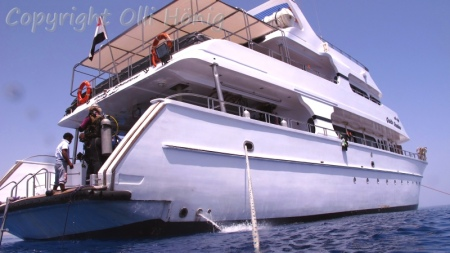 Bluewater Safaris,M/Y Quick Shadow,Ägypten