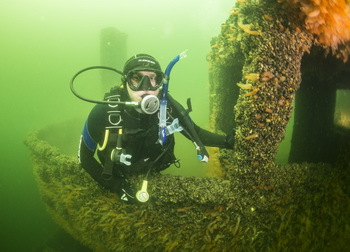 Aerosund: completely covered with underwater vegetation © Lars Stenholt Kirkegaard