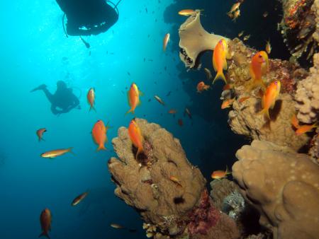 Dahab - Blue Hole,Ägypten