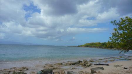 Antidote - Port Louis,Guadeloupe