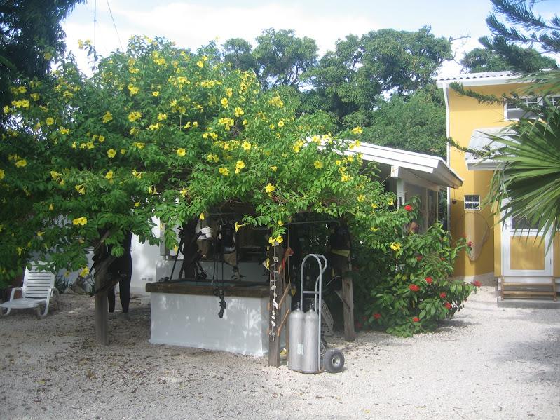 Tauchwaschbecken, Villa Mango Dive Center, Willemstad, Niederländische Antillen, Curaçao