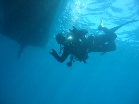 ACTION-DIVERS,Luzianes,Alentejo,Exclusive Divers Algarve,Portugal