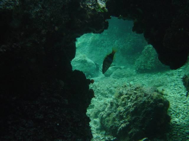 Insel Rab, Rab,Kroatien